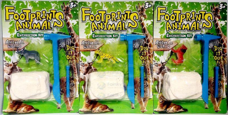 Animals Fossil