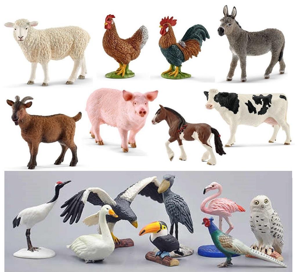 Bird & Farm Animals
