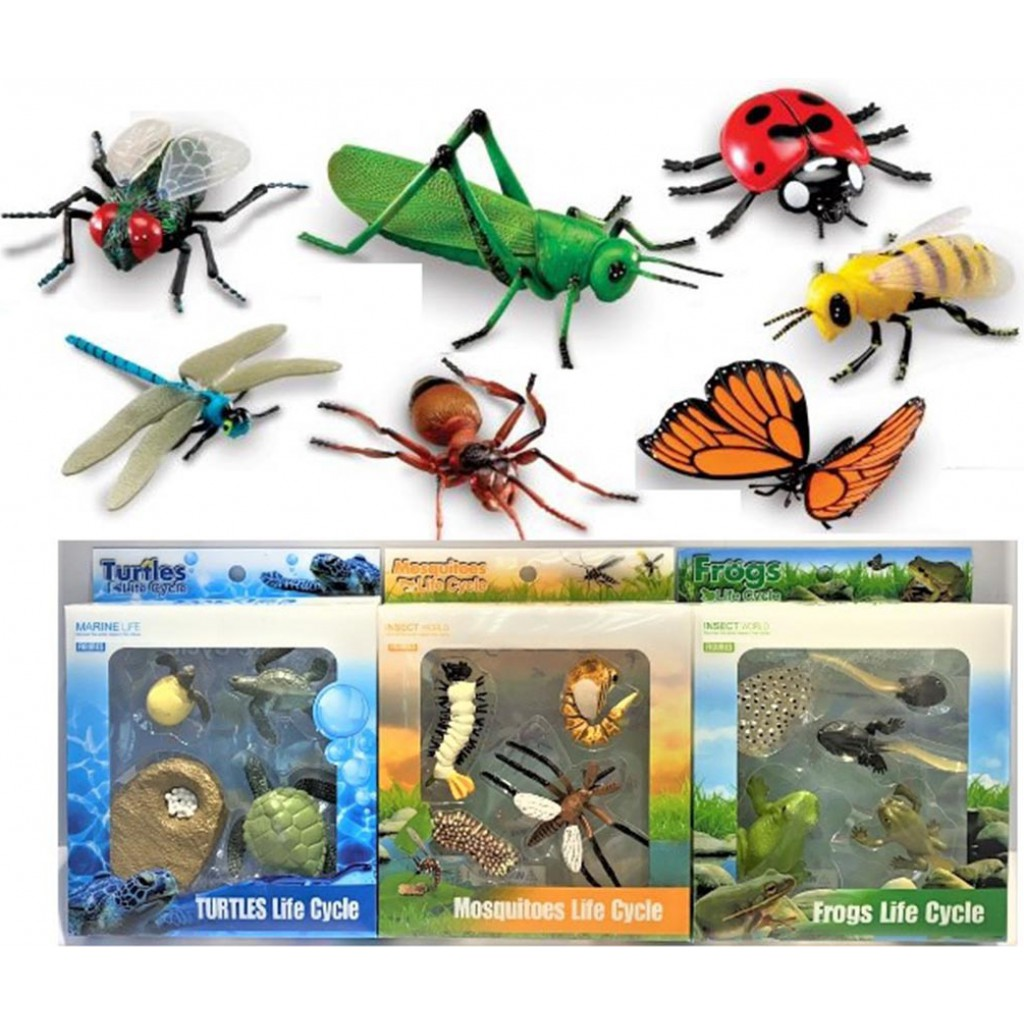 Insect & Reptile Animals